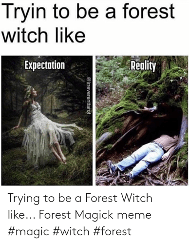 trying-to-be-a-forest-witch-like-forest-magick-meme-72443522