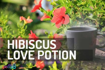 Hibiscus-Self-Love-Potion-Spell-360x240