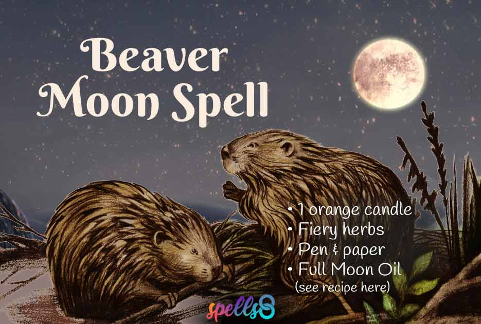 Full-Beaver-Moon-Spell-Witch-Magic