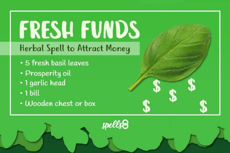 Spell-with-Basil-to-Attract-Money-750x500