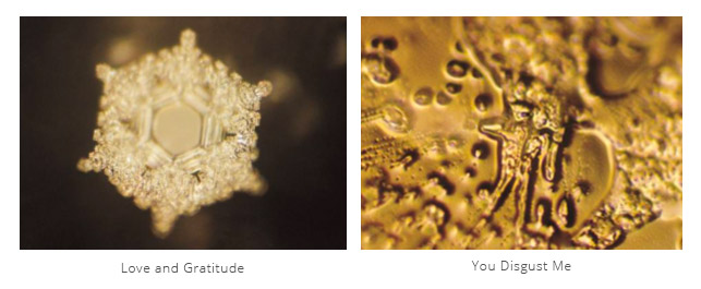 Water-Messages-Dr-Masaru-Emoto-Love-and-Gratitude